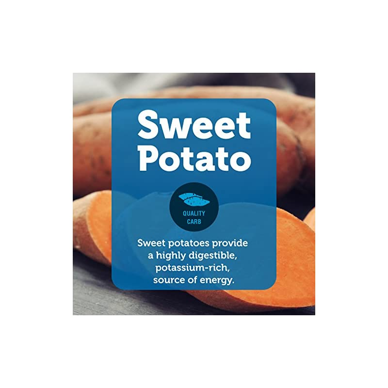 dog supplies online natural balance limited ingredient diets sweet potato & venison formula dry dog food, 26 pounds, grain free