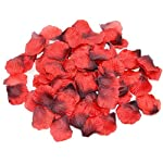 Shenglong Rose Petals for Wedding 5000 Silk Rose Artificial Petals Supplies Wedding Decorations (Deep Red)