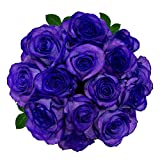 FRESH Tinted Roses| Purple| 25 stems (Meteorite Rose) Magnaflor - XXL Blooms| Bunch| 10-12 days vase Life