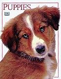 Puppies, Dorling Kindersley Publishing Staff, 078942133X