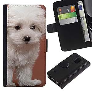 EuroCase - Samsung Galaxy S5 V SM-G900 - glen of imaal terrier dandie dog white - Cuero PU Delgado caso cubierta Shell Armor Funda Case Cover