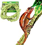 DREAMER.U Flexible Bend-A-Branch Jungle Vines Withe Pet Habitat Decor for Lizard,Frogs, Snakes Chameleon and More Reptiles (Large)