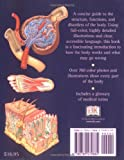 Human Body: An Illustrated Guide to Every Part of