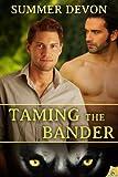 Taming the Bander, Summer Devon, 1619216833