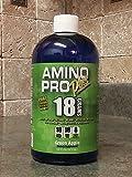 Amino Pro Plus Green Apple 16oz