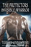 Invisible Warrior: Volume 11