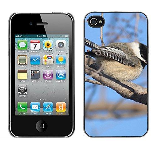 Premio Sottile Slim Cassa Custodia Case Cover Shell // F00009899 oiseau // Apple iPhone 4 4S 4G
