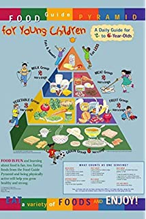 VEGETARIAN FOOD PYRAMID EDUCATIONAL POSTER 24X36 healthy living HOT NEW RARE