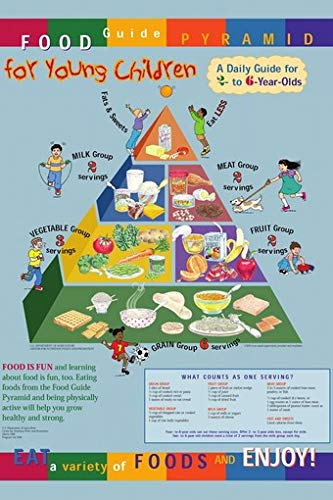 Food Guide Pyramid for Young Children Poster 24x36 Detailed Colorful Informative Healthy Lifestyle