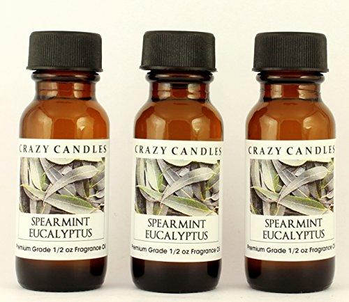 Spearmint Eucalyptus 3 Bottles 1/2 FL Oz Each (15ml) Premium Grade Scented Fragrance Oil by Crazy Candles