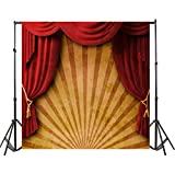 Leyiyi 10x10ft Photography Background 3D T Stage Backdrop 1st B Day Party Fun Fair Circus Tent Curtain Abstract Stripe Chinese Drama Lay Flat Kids Birthday Baby Shower Photo Portrait Vinyl Studio Prop