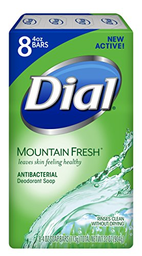 Fresh Deodorant Deodorant Bar Soap - Dial Antibacterial Bar Soap, Mountain Fresh, 4 Ounce, 8 Bars