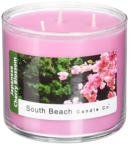 Blossom Soy Candle (South Beach Candle Japanese Cherry Blossom Scented Soy Candle, 16-Ounce)