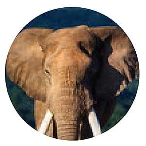 alfombrilla de ratón Acercamiento del elefante - ronda - 20cm