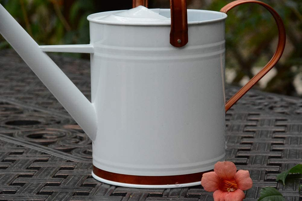 Black yourjoy Galvanized Metal Watering Can with Long Spout 4L One Gallon Watering Can for Outdoor Indoor House Garden Plants