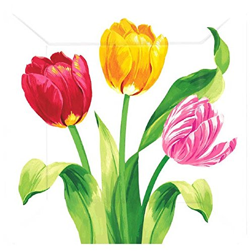 Amscan 541196 Bright Tulips Square Plates Party Supplies, 7
