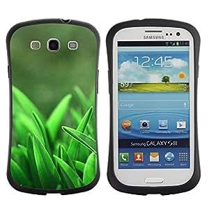 "Pulsar iFace Series Tpu silicona Carcasa Funda Case para SAMSUNG Galaxy S3 III / i9300 / i747 , Hierba Crecer primavera Naturaleza"""