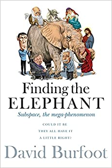 Book Finding the Elephant: Subspace, the Mega-phenomenon