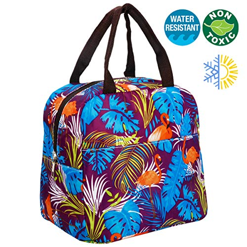 Lunch Bag with Zipper Closure Insulated Lunch Tote Box for Women/Men Large capacity Lunch Containers Waterproof Oxford Cloth Interior Aluminum Foil Leak - Lunch Box Tote Insulated