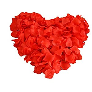 Heart Shaped Red Rose Petals (200 Pc) 65
