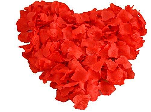 Fun Express Valentine Heart Shaped Red Rose Petals; 200 Pcs ()