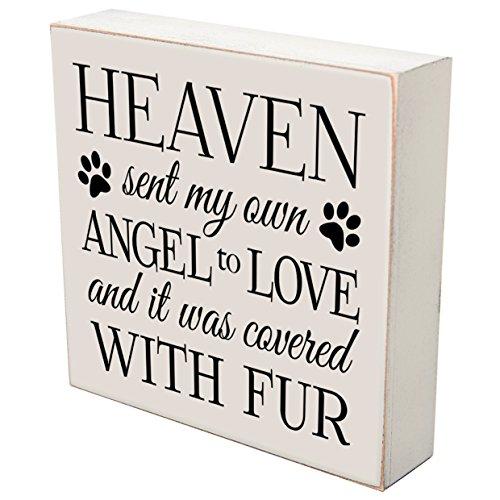 Own Pet Memorial - LifeSong Milestones Heaven Sent My Own Angel to Love Loss of Dog cat or pet Memorial Gift Keepsake Shadow Box 6x6 (Heaven sen My own Angel)