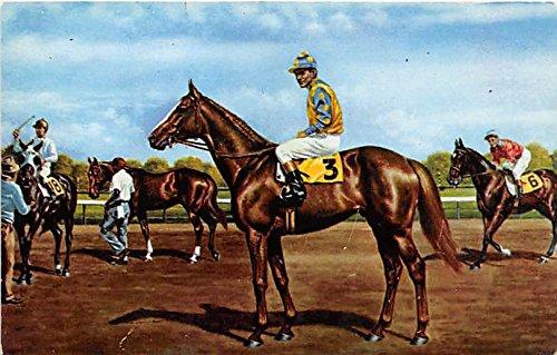 Prince John, Garden State Park Delaware Township, New Jersey, NJ, USA Old Vintage Horse Racing Postcard Post - Nj Jersey Garden