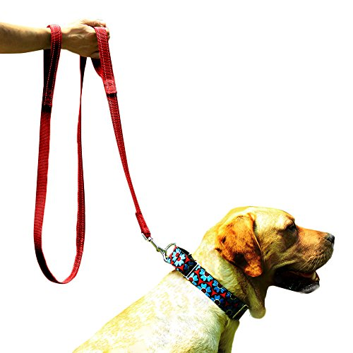 Image of EXPAWLORER Double Handles Dog Training Leash 6 FT, Heavy Duty Padded Handle Lead for Traffic Safety Control, Perfect for Medium to Large Dog, Red