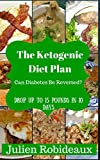 the ketogenic diet plan: can diabetes be reversed? drop up to 15 pounds in 10 days (ketogenic diet for weight loss,diabetes,diabetes diet plan,prediabetic cookbook,diabetes cookbook,diabetes cooking)