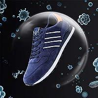 QINAIDI Secador de Zapatos, Zapatos Desodorante UV con USB y ...