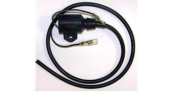 WSM Ignition Coil 004-178