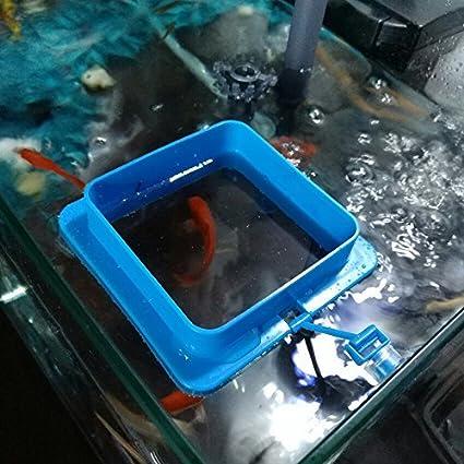 SENZEAL 2X Anillo de alimentación de Pescado de plástico Alimentador Flotante de alimento para Peces Anillo Cuadrado y Redondo Mejorado Diseño Azul: ...