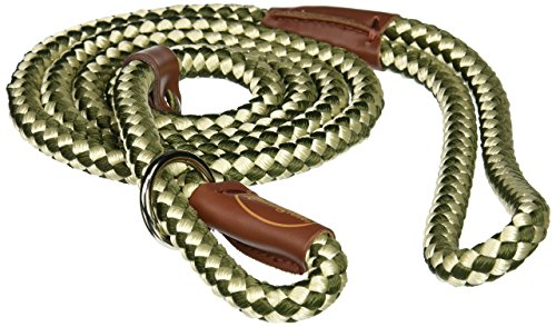Coastal Pet Products DCPR0216GRW Nylon Remington Rope Slip Dog Leash, 6-Feet, Green/White - Green Dog Lead