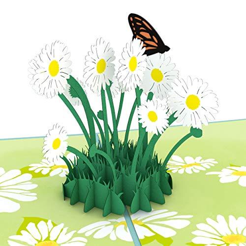 Lovepop Daisy Patch Pop Up Card (2019), 3D Card, Greeting Card, Mother's Day Card, Spring Card, Summer Card, Birthday Card, Flower Card, Appreciation Card