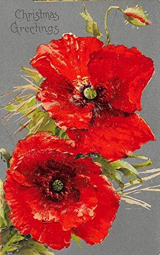 Christmas Post Card Old Vintage Antique Xmas Postcard Flowers Unused