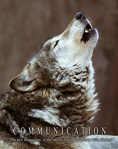 Gray Timber Wolf Motivational Poster Art Print 11x14 WWF Wildlife Sculpture  Gift Class Room Wall Decor Pictures
