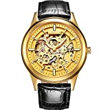 PASOY Men's Automatic Mechanical Watch Steel Sapphire Glass Luminous Hands Black Leather Skeleton Watches