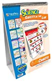 NewPath Learning 10 Piece Science Safety in the Lab Curriculum Mastery Flip Chart Set, Grade 5-10
