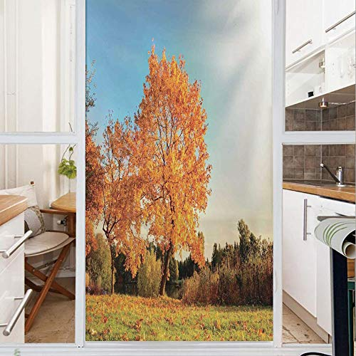 Decorative Window Film,No Glue Frosted Privacy Film,Stained Glass Door Film,Autumn Sight with Pale Falling Leaves in Park Foliage Nature Season Concept,for Home & Office,23.6In. by 59In Orange Blue