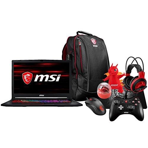 MSI GE73 Raider RGB-012 (i7-8750H, 16GB RAM, 256GB SATA SSD + 1TB HDD, NVIDIA GTX 1070 8GB, 17.3