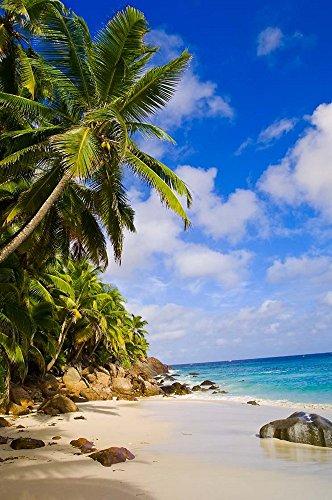 Anse Victorin Beach, Fregate Island, Seychelles by Alison Wright / Danita Delimont Art Print, Size 23 x 34 inches
