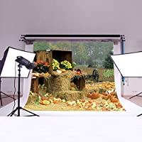 LB 7X5ft Halloween Gift Poly Fabric Photography Background Customized Photography Backdrop Studio Prop WS10