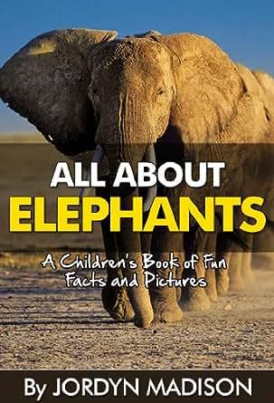 Saving Africa's elephants: 'Can you imagine them no longer existing?'