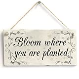 Bloom Where You Are Planted - Motivational Wooden Gardening Home Decor Sign Wooden Hanging Sign 4