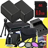 TWO NP-FV100 Lithium Ion Replacement Batteries w/Charger + 8GB SDHC Memory Card + 67mm 3 Piece Filter Kit + Memory Card Reader/Wallet + Deluxe Starter Kit + 3 Piece Filter Kit for Sony NEXVG10, NEXVG20 Interchangeable Lens HD Handycam Camcorder DavisMAX A