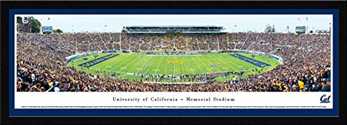 California Golden Bears Football - Blakeway Panoramas College Sports Posters with Select Frame