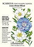 Isaac House Blend Pincushion Flower - 300 mg - Scabiosa