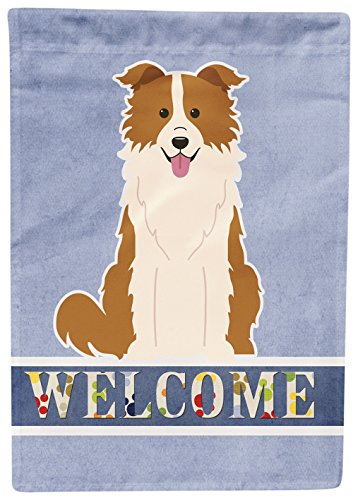 Caroline's Treasures Border Collie Red White Welcome Flag Garden, Small, Multicolor For Sale