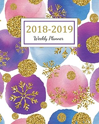 Agenda Schedule Organizer Logbook and Journal Notebook Gold Cover 2018-2019 For Two Year Planner 365 Daily Weekly And Monthly Calendar 2018-2019 Weekly /& Monthly Planner