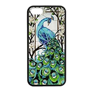 Canting_Good Stained Glass Custom Case Shell Skin for iPhone 5 5S TPU (Laser Technology)